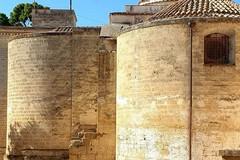 Il Club per l'UNESCO di Canosa riprende le  attività