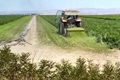 Furti di mezzi agricoli: esasperati gli agricoltori