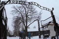 Auschwitz nelle opere degli ex-prigionieri
