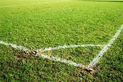 Finanziamento regionale per il Centro Sportivo di Viale Primo Maggio