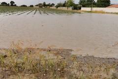 Maltempo: allerta arancione in Puglia