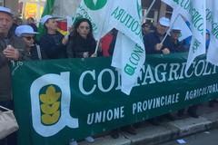 Regione Puglia autorizza il trasporto dei lavoratori agricoli riducendo la distanza interpersonale