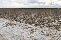 Il maltempo flagella la Puglia