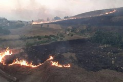 Canosa: a fuoco la collina di via Corsica