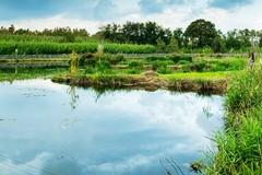 Loconia: un impianto di depurazione delle acque a servizio della Borgata