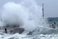 Gli oceani gravemente colpiti dai cambiamenti climatici