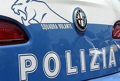 La Polizia recupera 11 veicoli rubati