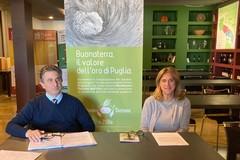 Gli albori del Movimento Turismo del Vino Puglia
