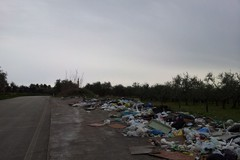 Illegalità ambientale: La Puglia è al secondo posto in Italia