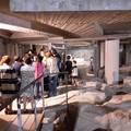 Canusium romana: alla scoperta delle vestigia imperiali