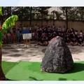 Indietro nel tempo : Una giornata tra i dinosauri