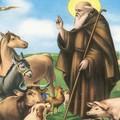 Sant'Antonio Abate, il Patrono degli animali,