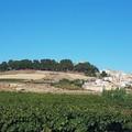 Canosa, la  città  dei  sette  colli