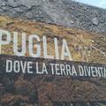 Il Movimento Turismo del Vino Puglia a Vinitaly 2019