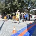 Vito Loconte vince la 21^ DIOMEDIADE