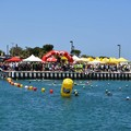 Al via il Campionato Open Fin Puglia di Nuoto in Acque Libere