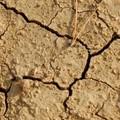 Giornata desertificazione:  a rischio siccità il 57% del territorio pugliese