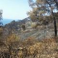 Incendi  anche alle  Isole Tremiti