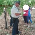 Caporalato e sfruttamento di braccianti agricoli