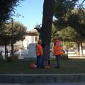 Lavori di manutenzione nella Villa Comunale