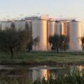 Il fenomeno delle agromafie in Puglia