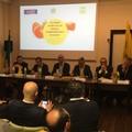 """Sostenibilità filiera pomodoro  """"100% Made in Italy """""""
