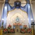 La Chiesa dell'Immacolata Concezione di Maria Petroni Ferrara