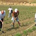 Rinnovato contratto operai agricoli
