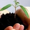 Salute e territorio: prendersi cura del proprio ambiente