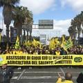 Assessore di Gioia giù le mani dall'agricoltura : Dimettiti!