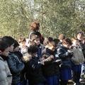 Bimboil : scuole elementari presso un'azienda agricola