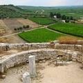 La colonna di Canne della Battaglia in greco, in latino, in italiano
