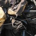 Scoperte attività illecite di smaltimento di rifiuti.