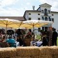 Al via Cantine Aperte 2018 del MTV Puglia