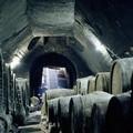 Sulle vie del vino e dell'olio
