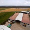 Sequestrata la discarica comunale di Cerignola
