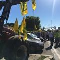 Grano: un migliaio di  agricoltori con trattori