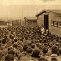 Memoria di prigionia:Stammlager XVII A