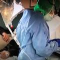 Coronavirus: 1.191 casi positivi in Puglia
