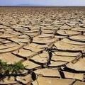 Crisi idrica: l'assessore Piscitelli annuncia che da oggi erogata l'acqua nelle campagne di Loconia
