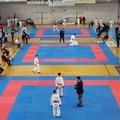 Fijlkam Campionato Regionale di karate