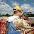 Edifici privati:contributi per interventi di rafforzamento locale o miglioramento sismico