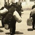 Gli italiani lasciano il Bel Paese
