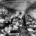 Cronache cittadine, l'epidemia del 1918: il virus della Spagnola