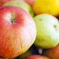 Frutta nelle scuole: misure necessarie per una maggiore qualità dei prodotti