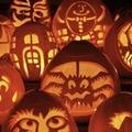 """Halloween: """"So veramente cosa sta dietro a tutto questo?"""""""