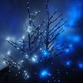 Ruvo, oggi 13 Dicembre al via col tradizionale falò di Santa Lucia