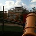 Parco Almirante: Il parco della vergogna è ridotto a canile-gabinetto privato