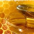 Puglia:Anno nero per la produzione di miele