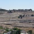 Il Monte Oliveto nel giorno delle Palme